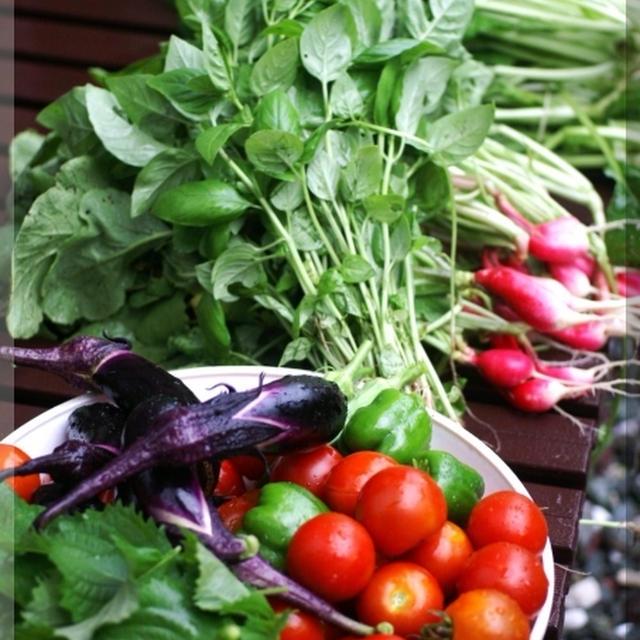 《毎日野菜生活^^!》毎日自給自足メイン料理ですみません><!