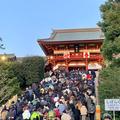 お正月3日目は活動的でした♪箱根駅伝を見て、鶴岡八幡宮へ初詣へ