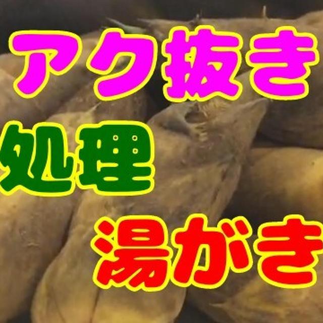 筍(たけのこ)のアク抜き・下処理!筍を米ぬかと一緒に茹でる理由