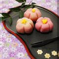 * 電子レンジで簡単♪お花見にピッタリの和菓子づくりにチャレンジ!