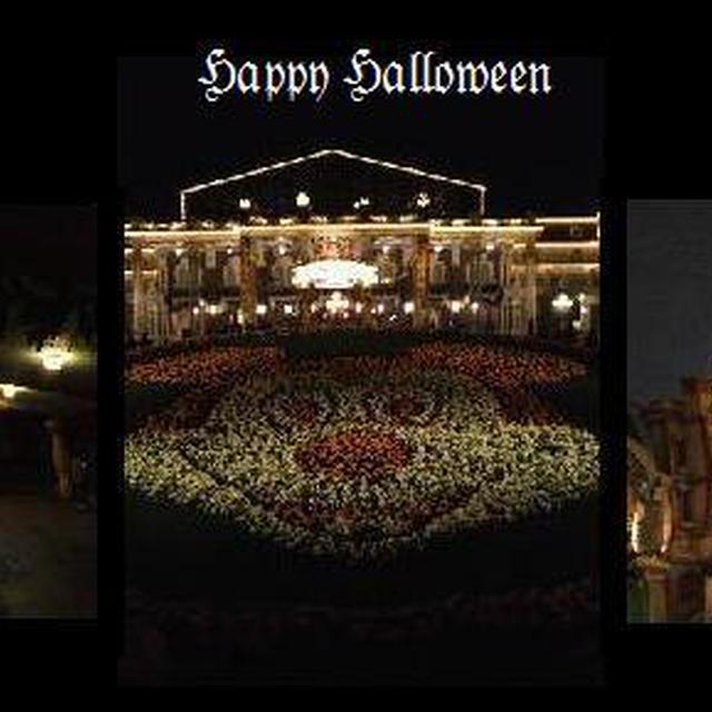 <Dreamia Club> Happy Halloween