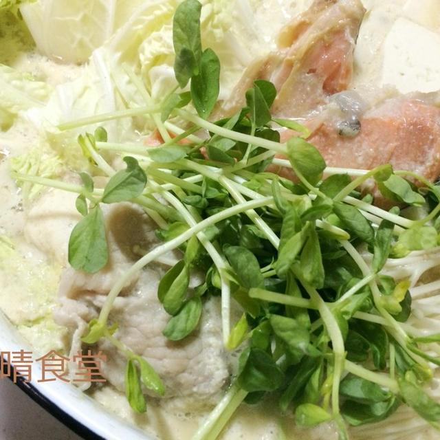 簡単でヘルシー!鮭の味噌豆乳の鍋。
