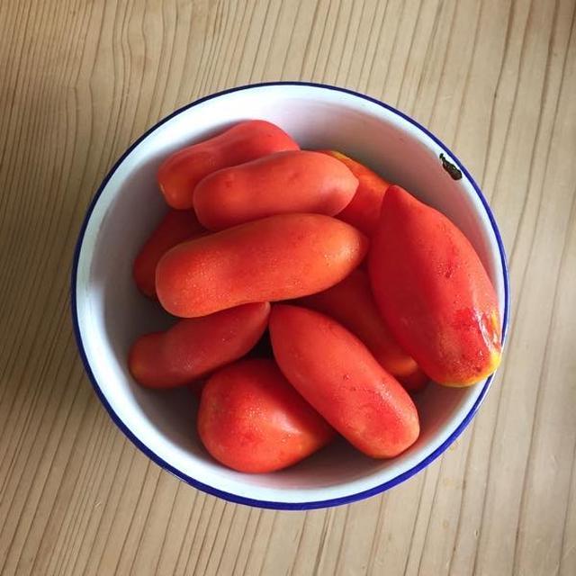 サンマルツァーノ種のトマトでトマトソース