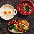 フキの葉味噌ご飯弁当・ハヤシライス弁当・嬉しかったお褒めの言葉・我が家の庭