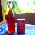 【レシピ】簡単で美味しい!ルイボスアイスティー