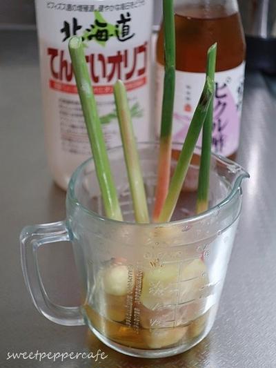 パルシステムの葉しょうが~☆