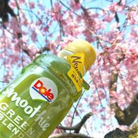 桜の季節を楽しみたくて、、お団子とDoleスムージー持ってプチお花見〜。