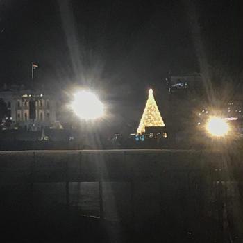 white houseのクリスマスツリー点灯式