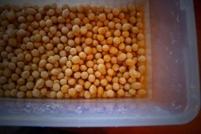 大豆、浸してます。