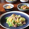 春キャベツと豚肉の卵炒め。新たまねぎの煮物。