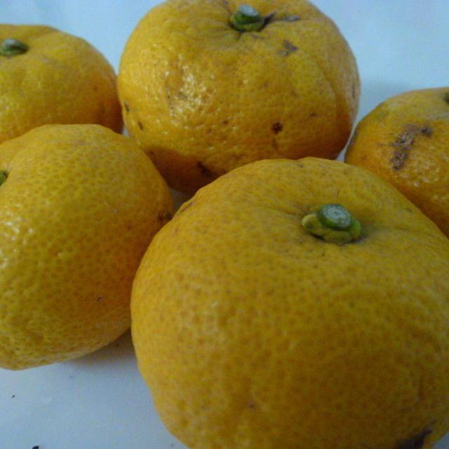 冬至 生徒様からいただいた柚子を使って・・・