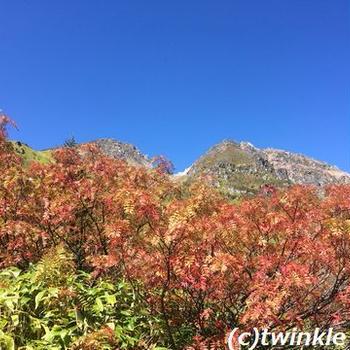 焼岳紅葉登山