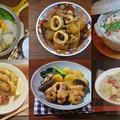 【おすすめ大根レシピ6選】 カラダにやさしい大根を使った絶品料理 by KOICHIさん