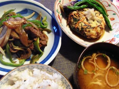 今日の夕食は、手作りがんも、牛肉と野菜の炒め物