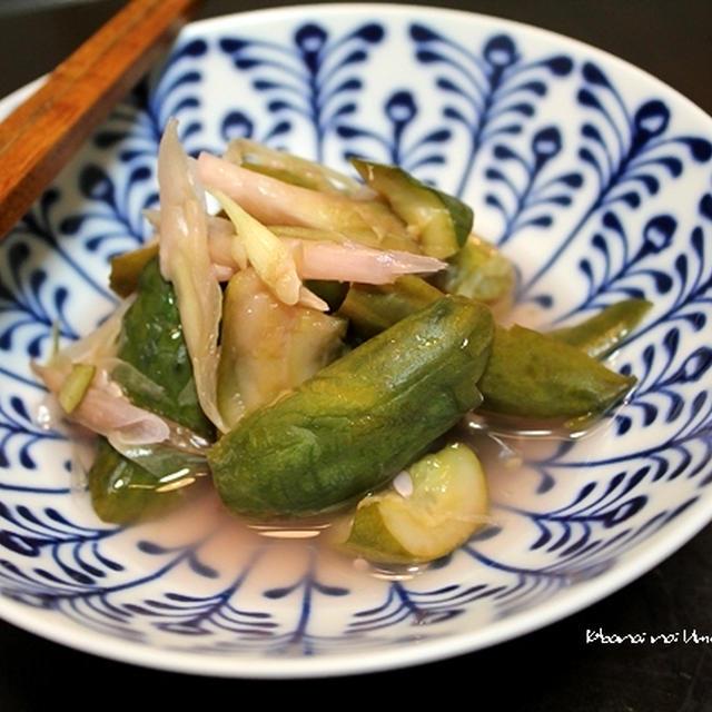 たたき胡瓜の「梅酢」漬け