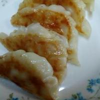 簡単でおいしい☆シーチキンと白菜の味付き餃子