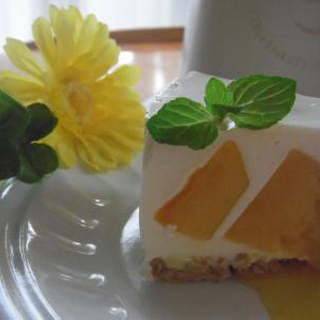 親子で簡単♪マンゴーのレアチーズケーキ・・^^