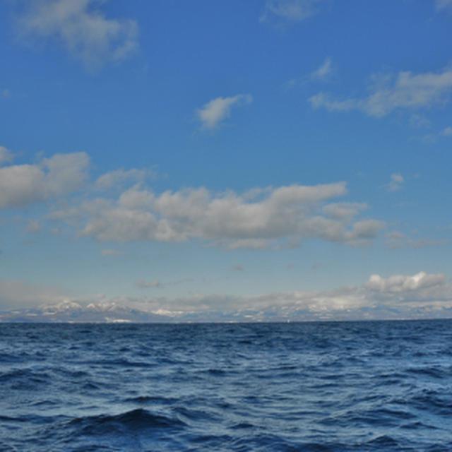 行きは良い良い…帰りは怖い …冬の海 =3