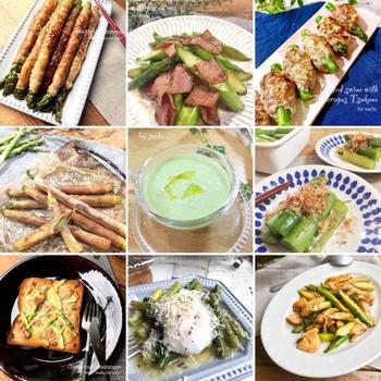 アスパラを使った簡単レシピ10選♡【#簡単レシピ#アスパラ】