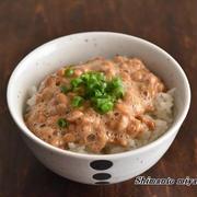 マツコの知らない世界で紹介された「納豆バターごはん」は驚愕の美味しさ!