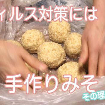 ウィルス対策に「手作り味噌」がおすすめの理由