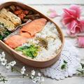 曲げわっぱ弁、春らしい色あいのラクラク鮭弁当&カツの話