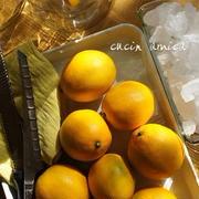 檸檬酒作り