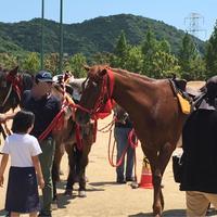 信長まつりで乗馬体験
