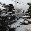 大雪にびっくり。穴子丼