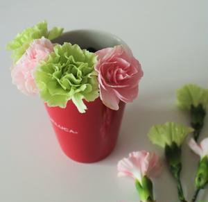 4.マグカップのフチから少しお花が出るぐらいの長さで、ぐるりと1周スプレーカーネーションを挿します。