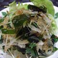 <新玉葱とわかめの和風気分なサラダ>