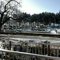 久々の雪で・・・。(゚∀゚;)