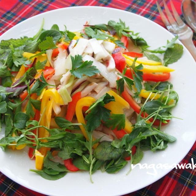 焼きイカとセロリのサラダのレシピ