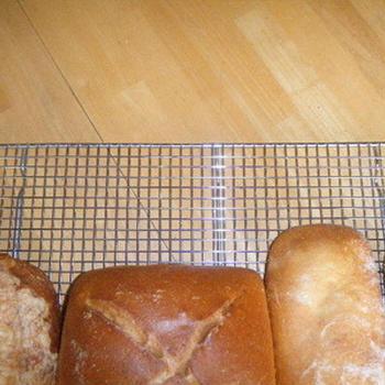 マスタードポーク&マッシュルーム〜いろんなパンでサプライズ!