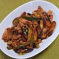 豚肉とナスとピーマン他の中華風甜麺醤炒め