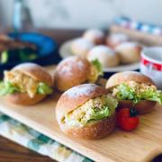 レーズン酵母の丸パン(酵母液・ストレート法)