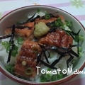 ひつまぶし丼VS鯵のかば焼き丼 by とまとママさん