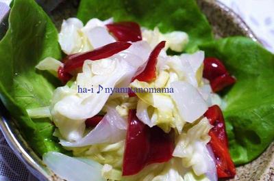 <新鮮新玉葱とキャベツの甘酢漬け>とブログしばらくお休み致します。
