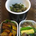 高校生男子弁当㉚&今日の晩御飯(チキングラタン、大根サラダ、ガーリックトースト)
