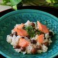レシピ*むかごと鮭のご飯