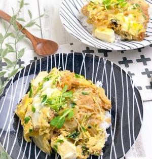 【リメイク】豆腐でカサ増し、残った白身魚フライでカツ丼風卵とじ丼