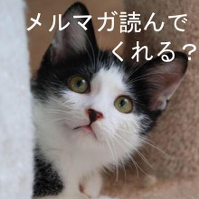 【メルマガ一部転載】めいちゃんと執事のお料理講座◆味噌を知る◆トマトソーダ新発売