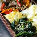 牛ピーと青菜ジャコ炒め弁当