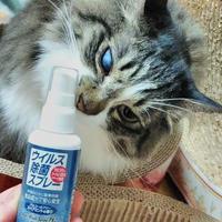 ペットにも安心安全な除菌「ミリオン ウィルス除菌スプレーPK2」