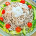 野菜の食感を楽しむ〜大根とキュウリと豚しゃぶのサラダ蕎麦。