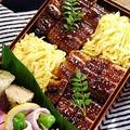◆うなたま弁当。 by そーにゃさん