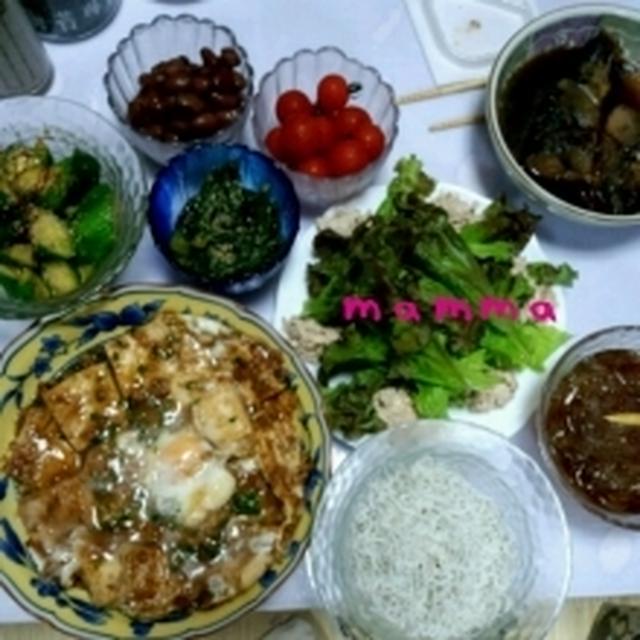 ☆スキ・焼き豆腐&ツナサラダ&やみつき胡瓜&冷やし中華☆7/25
