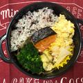 【第5週目 水曜日】お腹に優しい かき卵と秋鮭弁当