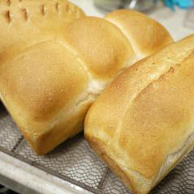 3色ミニ食パン(シナモンレーズン&クリチチョコ&プレーン)♪