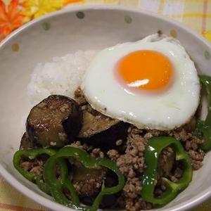 簡単 挽肉と茄子のカレー風味がウマウマな丼